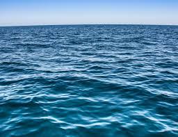 400,000  Crew Stranded at Sea Set to Regain  Freedom , Repatriation