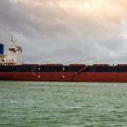 Vietnamese Ship Runs aground off Philippines after Officer Falls Asleep