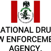 NDLEA Seizes Cocaine Worth N7bn from Passenger at Lagos Airport